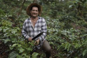 Juan Hurtado con planta de canavalia. Foto de CRS/ Oscar Leiva