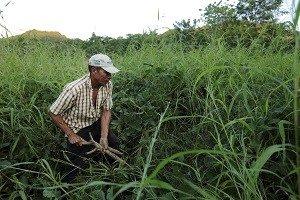 Jose Tomas Cruz, Yalagüina, Madriz, Nicaragua. Foto CRS / Oscar Leiva