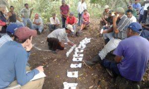 Imagen 6 – Agricultores/as realizando evaluación cualitativa de los avances en la restauración del suelo en la Comunidad Cerro Grande, Yalaguina, Nicaragua.